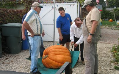 Family Fun is a Tradition at the Harvest Festival