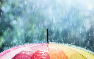 Weathering the Storm – Westvyne